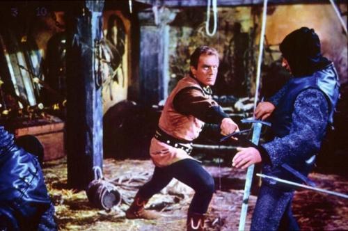 photo les vikings attaquent.JPG