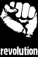 revolu11.jpg